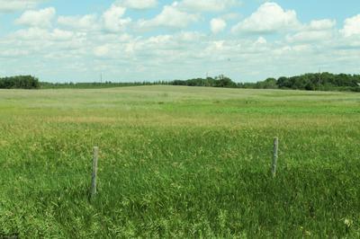XXX STATE HWY 29, Parkers Prairie, MN 56361 - Photo 2