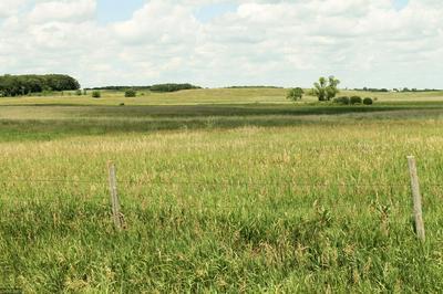 XXX STATE HWY 29, Parkers Prairie, MN 56361 - Photo 1