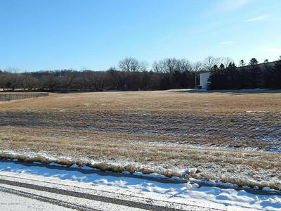 1100 HIMLIE DRIVE, Rushford, MN 55971 - Photo 2