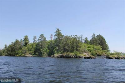 TBD GRASSY POINT, Cook, MN 55723 - Photo 2