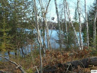 TBD HATCH LAKE RD, Marcell, MN 56657 - Photo 2