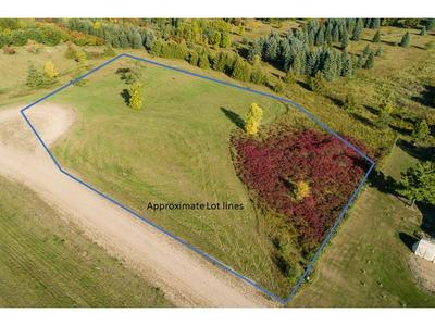 XXX 215TH STREET, Clitherall Twp, MN 56515 - Photo 2