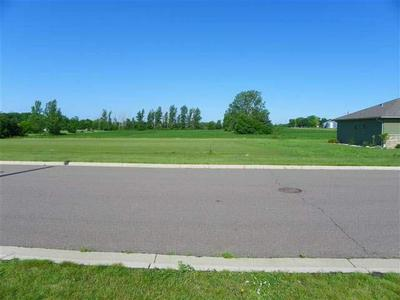 407 FOX LAKE AVE, SHERBURN, MN 56171 - Photo 2
