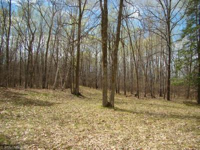 TBD LOT 2 BLOCK 1 WOODGATE, Fifty Lakes, MN 56448 - Photo 2
