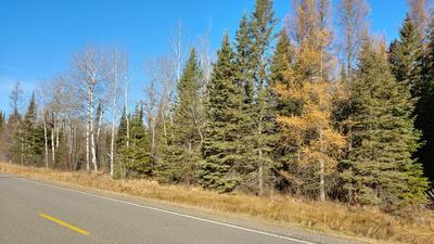 TBD HWY 65, Cook, MN 55723 - Photo 2