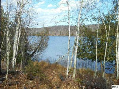 TBD HATCH LAKE RD, Marcell, MN 56657 - Photo 1