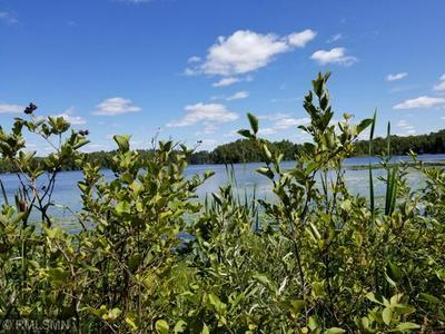 TBD BURNS LAKE RD, Marcell, MN 56657 - Photo 2