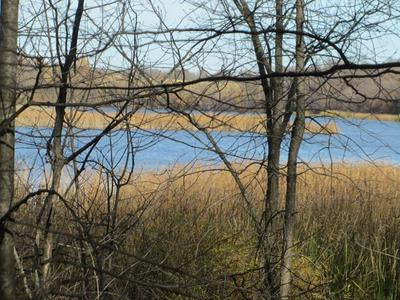 XXX CROOKED LAKE SW, Farwell, MN 56327 - Photo 1