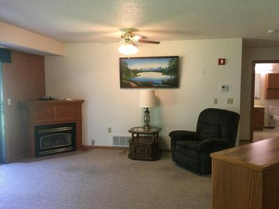 401 S COUNTY ROAD 5 APT 104, Springfield, MN 56087 - Photo 1