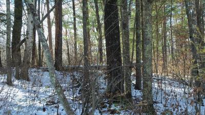LOT 7 FIREFLY LN, Webster, WI 54893 - Photo 2