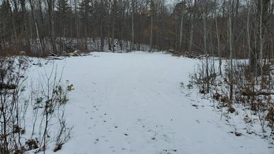 LOT 0 STATE HWY 27, Hayward, WI 54843 - Photo 1