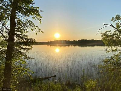 20352 RICE LAKE RD, Nashwauk, MN 55769 - Photo 1