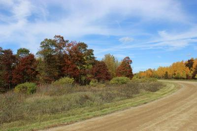 TBD HILLVIEW ROAD, Nevis, MN 56467 - Photo 2