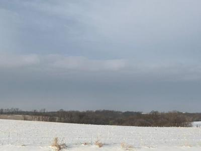 TBD COUNTY 14, Winnebago Township, MN 55921 - Photo 1