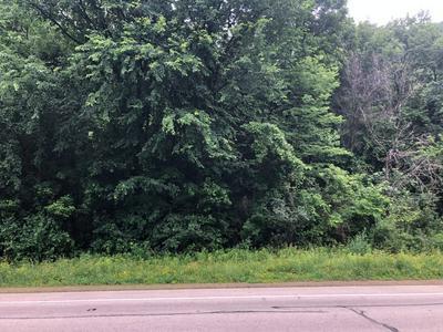 TBD STATE HWY 35, Buffalo Township, WI 54629 - Photo 1