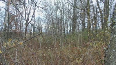 LOT 2 280TH AVE, Luck, WI 54853 - Photo 2
