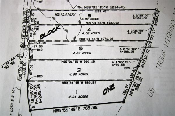 LOT 1 HIGHWAY 10, Cushing, MN 56443 - Photo 2