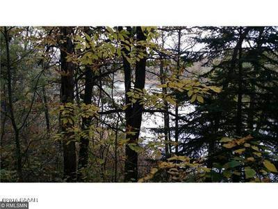 UNASSIGNED WILDERNESS DRIVE, Verndale, MN 56481 - Photo 2