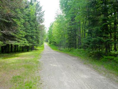 2880 DEER FOREST RD, Makinen, MN 55763 - Photo 2