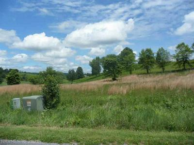 TBD FOUNTAIN SPRINGS DRIVE, Peterstown, WV 24963 - Photo 2