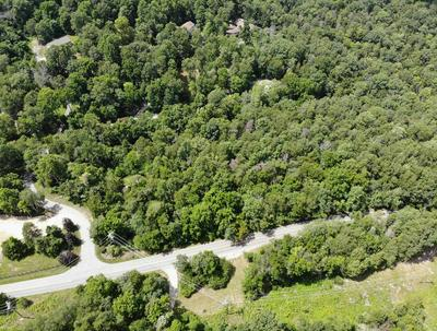 TBD FOREST VIEW LANE ROAD, Blacksburg, VA 24060 - Photo 1