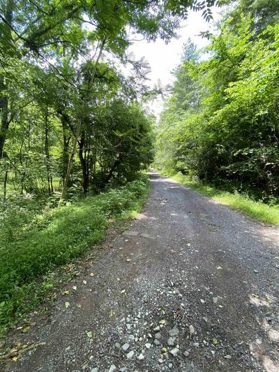 TBD WILLIS HOLLOW ROAD, Shawsville, VA 24162 - Photo 1