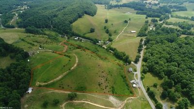 TBD SUNFLOWER ROAD, Pilot, VA 24138 - Photo 1