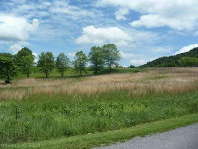 TBD FOUNTAIN SPRINGS DRIVE, Peterstown, WV 24963 - Photo 1