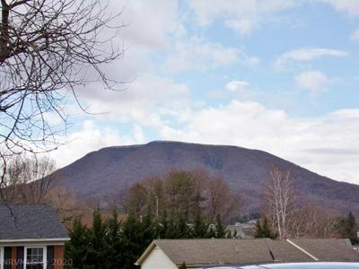 107 CAUDILL ST, PEARISBURG, VA 24134 - Photo 2