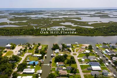 272 RANDLE AVE, Oak Hill, FL 32759 - Photo 1