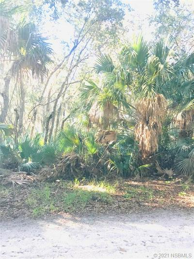 0 TREE TOP LANE, Edgewater, FL 32141 - Photo 2