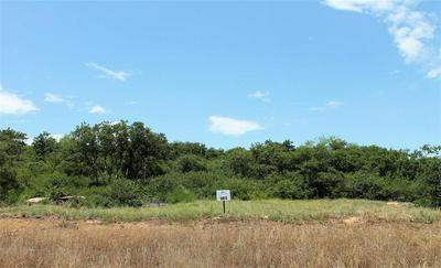 207 HIDDEN SHORES DRIVE, Cisco, TX 76437 - Photo 2