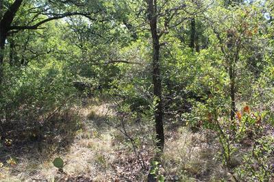 0004 CLAYTON MOUNTAIN ROAD, Gordon, TX 76453 - Photo 2