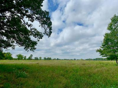 TRACT 3 COUNTY RD 1350, Clarksville, TX 75426 - Photo 2