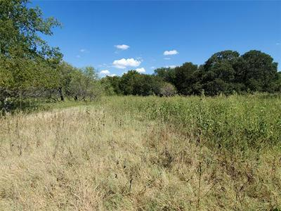TBD COUNTY RD 445, De Leon, TX 76444 - Photo 2