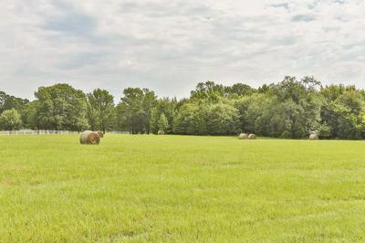 23840 STALLION PARK PL, Lindale, TX 75771 - Photo 2