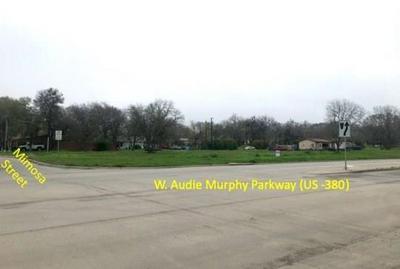 00 AUDIE MURPHY W PARKWAY, FARMERSVILLE, TX 75442 - Photo 2