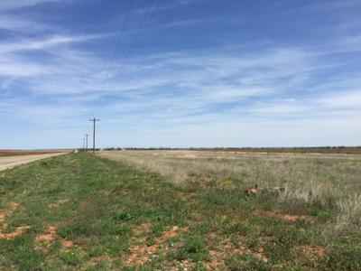TBD FM 611, Rotan, TX 79546 - Photo 2