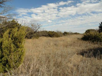 0001 COUNTY RD 161, Ovalo, TX 79541 - Photo 1