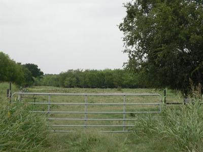 TBD SW NCR 3160 ROAD, Dawson, TX 76639 - Photo 2