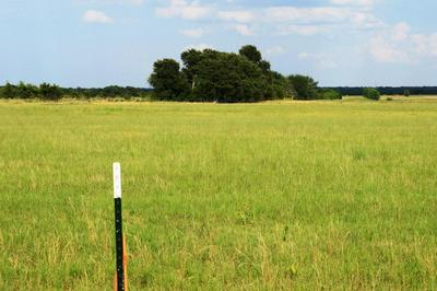 LOT 2 CR 4125, Campbell, TX 75422 - Photo 2