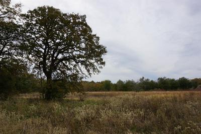 02 CR 1315 LANE, Malakoff, TX 75148 - Photo 1