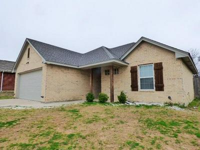 502 RAILEY CV, SPRINGTOWN, TX 76082 - Photo 1