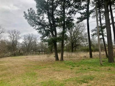425 HIGH ST, Blossom, TX 75416 - Photo 2