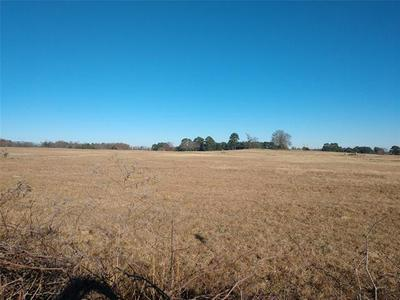 LOT 62 PR 52320, Pittsburg, TX 75686 - Photo 2