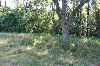 TBD FM 2737, Lone Oak, TX 75453 - Photo 2