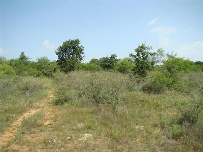 29 TRK2 CO ROAD 104, Cisco, TX 76437 - Photo 1