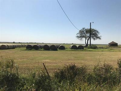 TBD BEREND ROAD, Pilot Point, TX 76258 - Photo 2