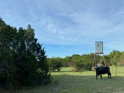 TBD CR COUNTY ROAD 431 WEST OF G STUB, Jonesboro, TX 76538 - Photo 2