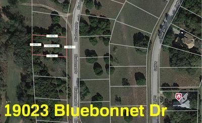 19023 BLUEBONNET DR, Whitney, TX 76692 - Photo 1